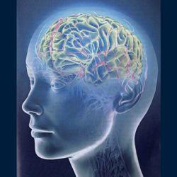 Компьютерная томография (КТ) головы